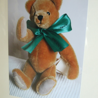 Photographic greetings card of a Teddy Bear with green bow tie.