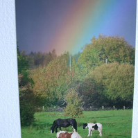 Photographic greetings card of a rainbow with 3 horses at the end.