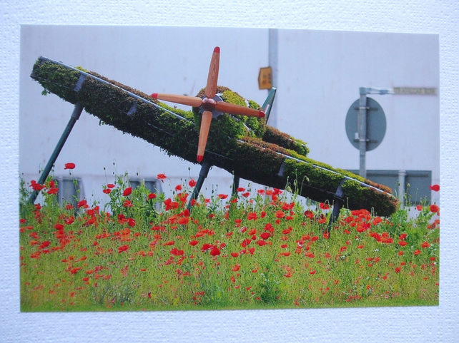 Photographic greetings card  of a Spitfire in topiary, from head on.