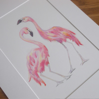 Flamingo love birds - hand painted water colour artwork