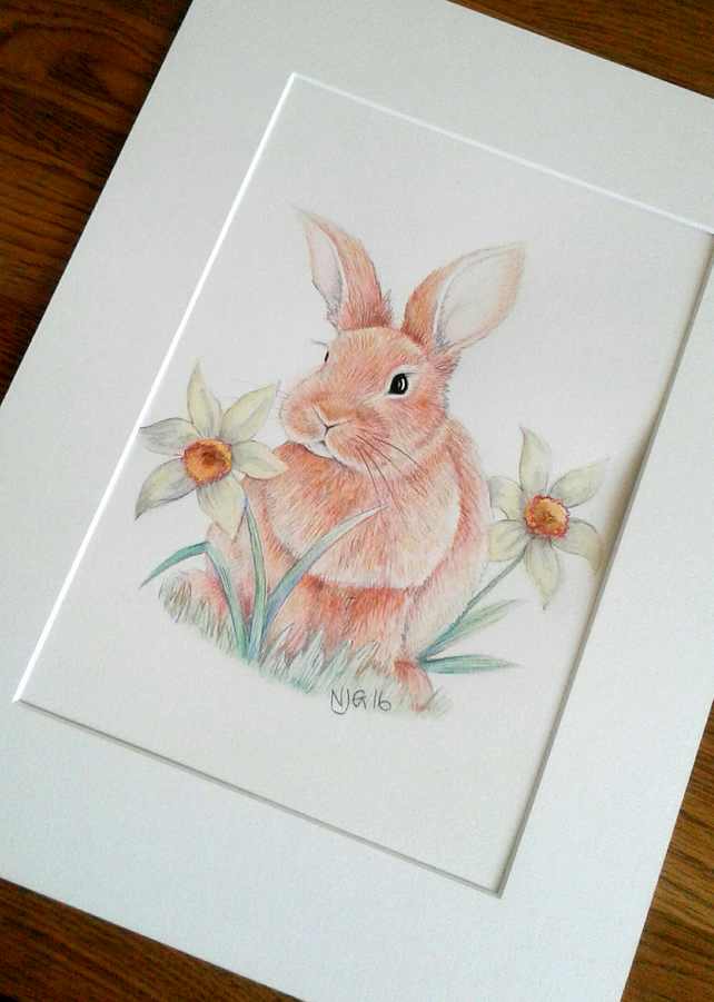 Bunny Rabbit with daffodils
