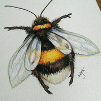 Fuzzy Buzzy - original artwork of a bumble bee