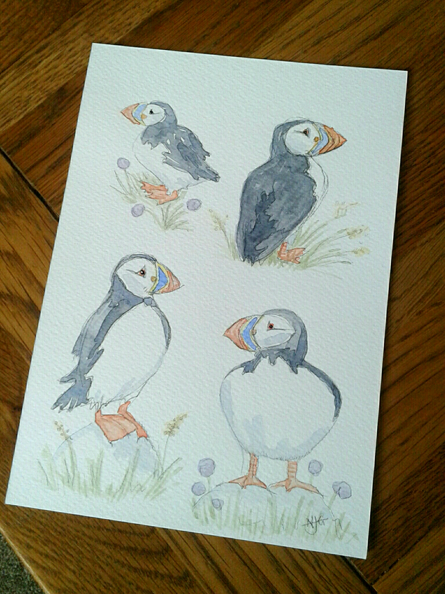 Original hand painted watercolour of four puffins in thrift.