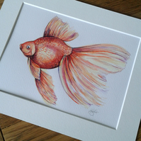 Original hand painted watercolour of a fantail goldfish