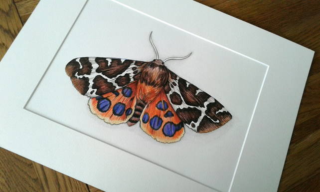Garden Tiger Moth - original hand painted artwork.