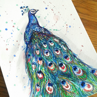 Peacock - original hand painted