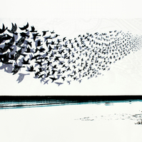 Rise and Fall, limited edition screen print, starling murmuration