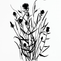 Wild Grass 2 (black edition)