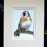 "ACEO 2.5""X3.5"" Original Watercolour 'Windswept Goldfinch'. Mounted."