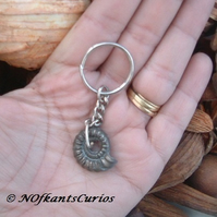 Pyrite Ammonite Fossil Keyring or Handbag Charm with Gold Tone findings