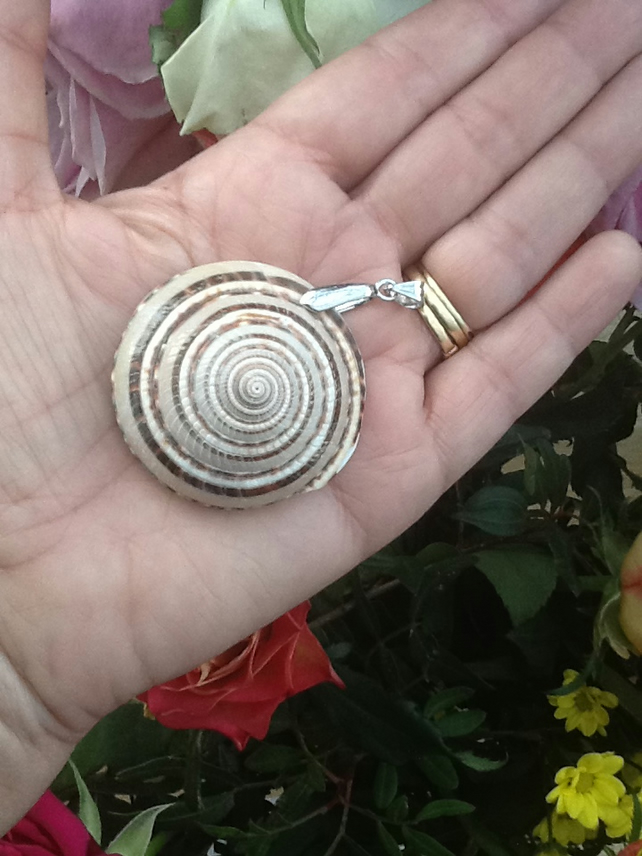 Mermaid!  Large Spiral Shell Pendant with Silver Tone Bail!