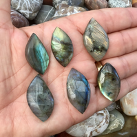 Set of 6 Free Form Labradorite Gemstone Cabochons for Jewellery Designers.