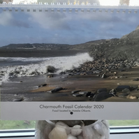 2020 Photographic Calendar. Charmouth Fossil Hunter!  For the Fossil Enthusiast.