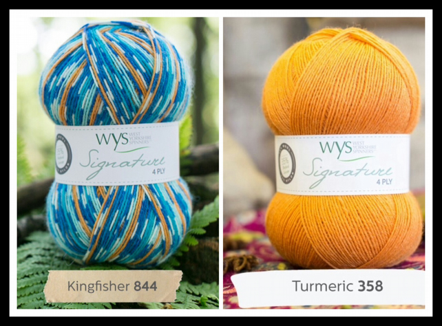 Signature 4ply Kingfisher
