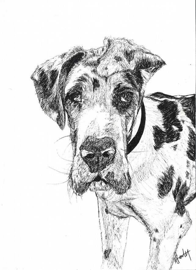 Custom A4 Black Pen Illustration Drawing Portrait of your Pet!