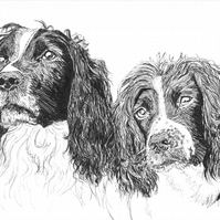 Custom A3 Black Pen Illustration Drawing Portrait of your Pet or pets!