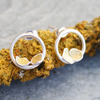 Sterling silver circle earrings, lichen earrings, nature earrings
