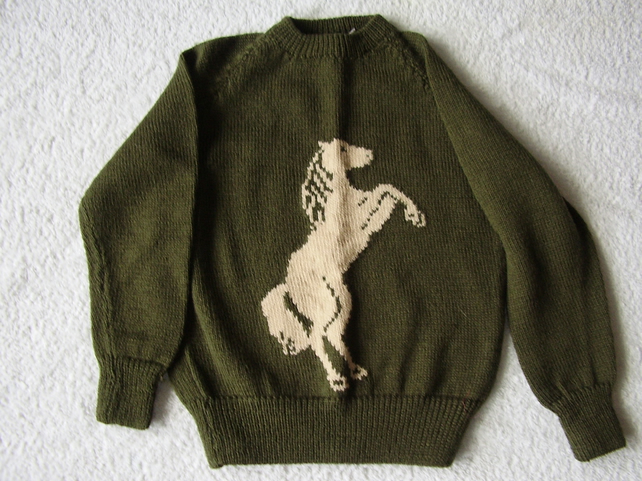 Child's jumper with a rearing horse on the front.