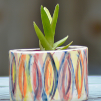 Medium Ceramic Carnival-Pattern planter
