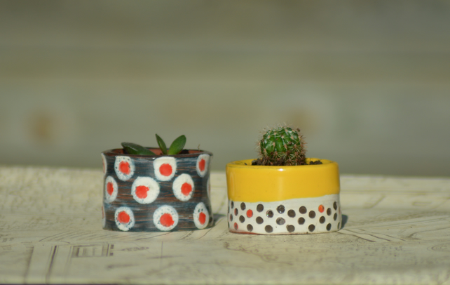 Spotty plant pots - set of 2