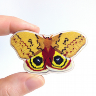 Automeris Io Moth – Wooden Brooch