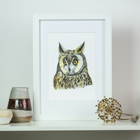 Long Eared Owl watercolour and ink print