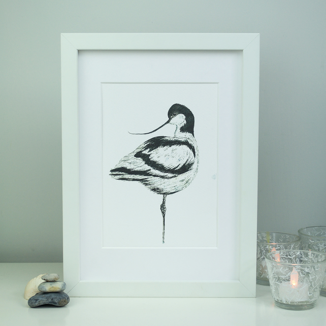 Avocet limited edition bird print