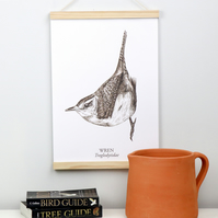 Illustrated Wren Fine Art Giclée Print, Sepia on White