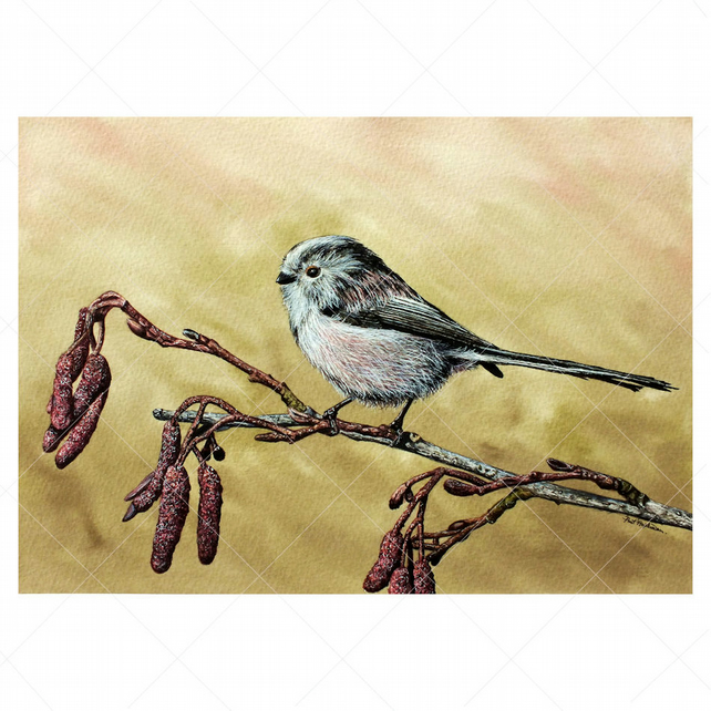 Watercolour Painting of a British Bird - Long Tailed Tit, Original Fine Art