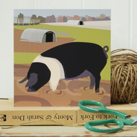 Saddleback Pig Card - Farm, animal, birthday