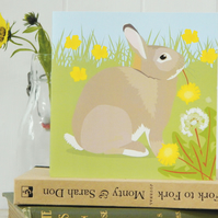 Rabbit Card - Easter Bunny, birthday, farm, animal