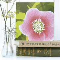 Hellebore Christmas card - Spring, flower, woodland
