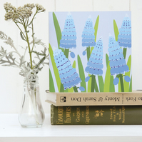 Blue Muscari or Grape Hyacinth Card - Spring, Birthday