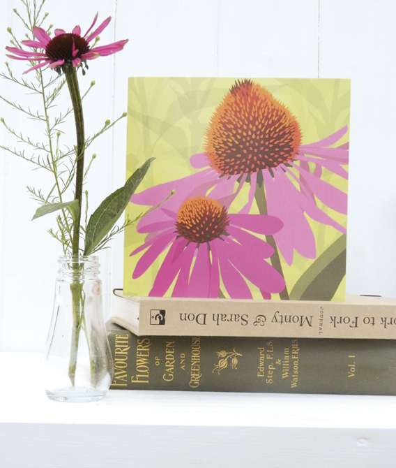 Pink Echinacea Card - Cone flower, birthday, summer
