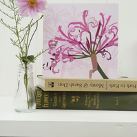Pink Nerine Card - birthday, flower, Autumn