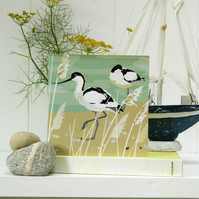 Avocets Card - birthday, bird watchers, british bird