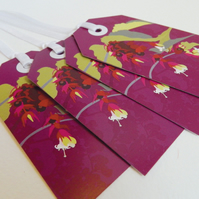 Pheasant Berry Christmas Gift Tags