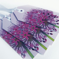 SALE - Purple Allium Gift Tags, Pack of TEN tags