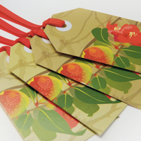 SALE - Quince Gift Tags, Pack of TEN tags