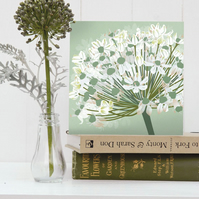 White Allium Card - Christmas, Floral