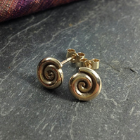 Gold ammonite stud earrings.