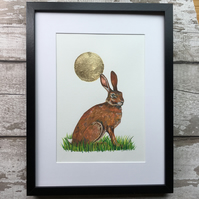 Hare with glittering summer sun