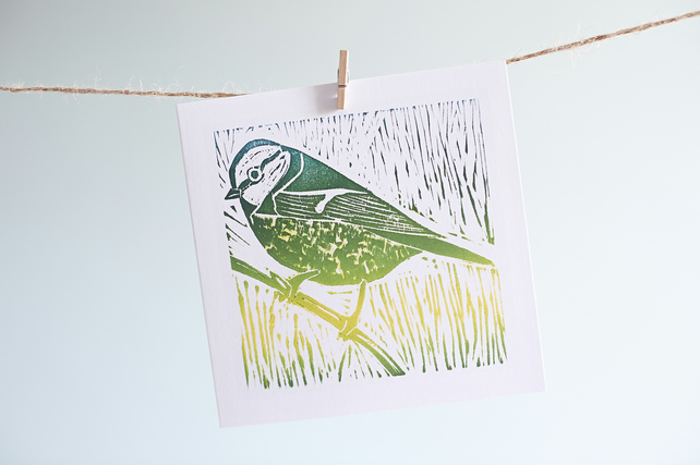 'blue tit' greetings card