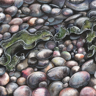 Seaweed and Pebbles - ORIGINAL PAINTING