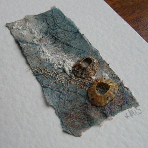 Seashore Card with Limpets