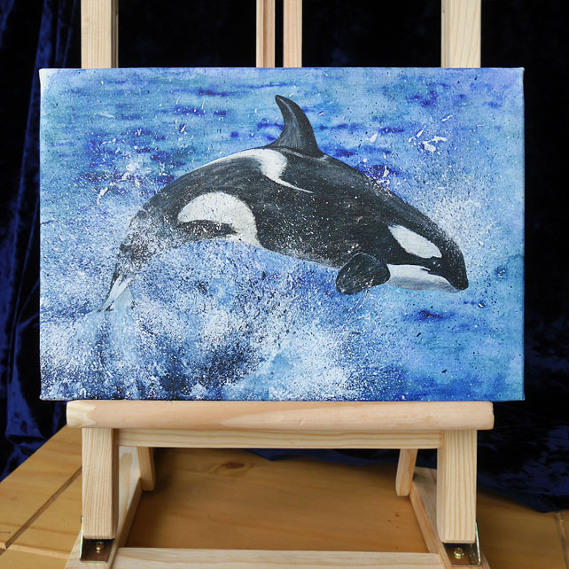 "Artist's Canvas Print ""Leaping Orca"" 12"" x 8"""