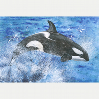 "HUGE Poster Print ""Leaping Orca"" 45"" x 30"" FREE UK Delivery"