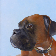 Portrait Painting of Your Pet in Oils or Acrylic