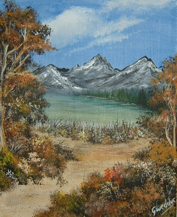 acrylic box canvas landscape art painting (ref 895)