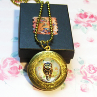 Tawny Owl Art locket